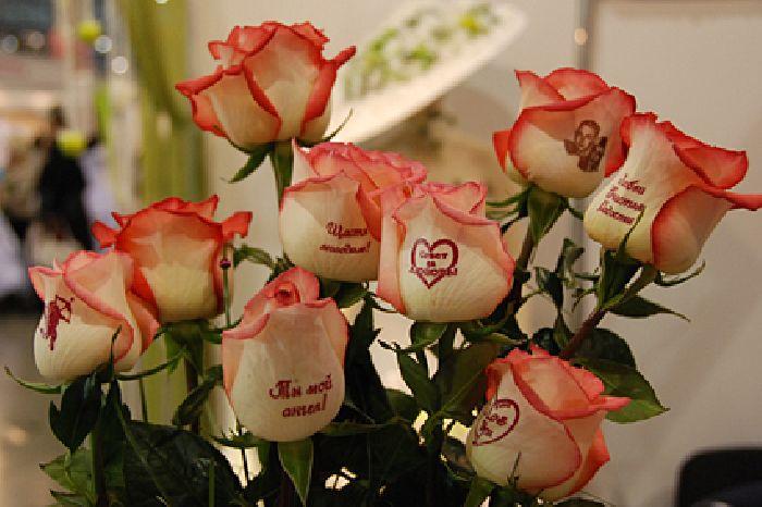 Розы в подарок с пожеланиями